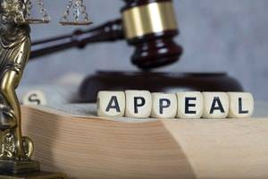 Reasons to Appeal a Guilty Verdict